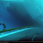 foto-costa-concordia-isola-giglio (12)