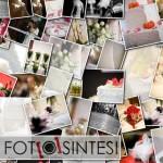 la_fotosintesi_foto