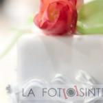 la_fotosintesi_foto-3