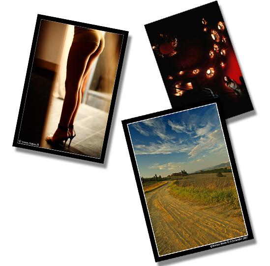 maggio_2008_foto_interviste